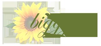 Biggys Notiz-Blog